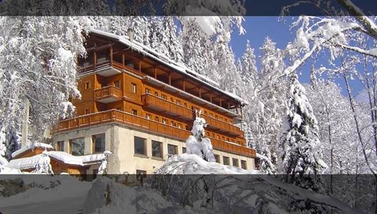 CHALET HOTEL LES CAMPANULES