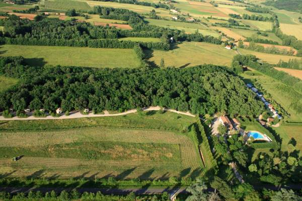 Camping du ch ne vert castelnau de montmiral - Maladie du chene vert arbre ...