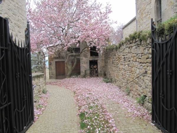 Chez Helen Chambre D X27 Hôte Bnb 63114 Bed Breakfasts For