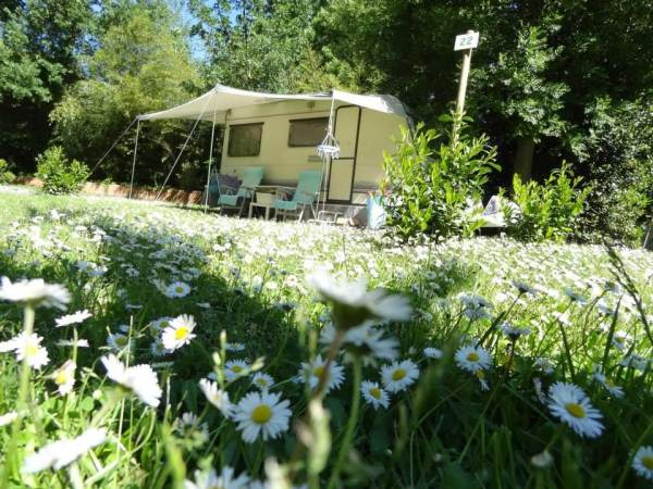 Camping Albizia