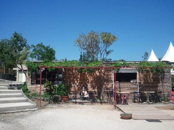VivaCamp Ludo Camping