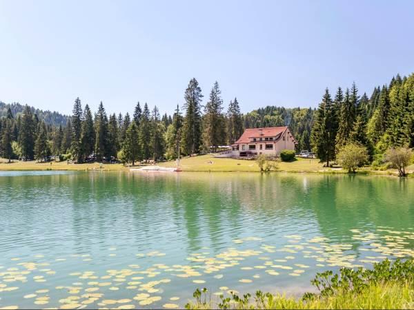 Logis Auberge du Lac Genin