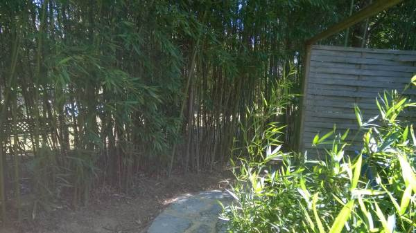Chambres d'hôtes le Magnolia
