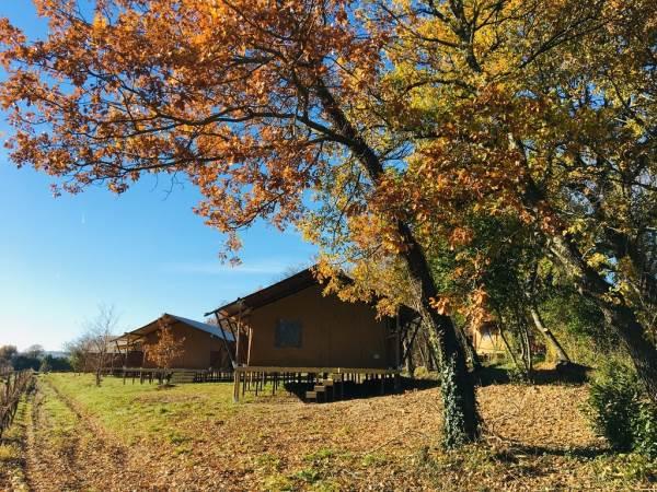 Les Lodges de Coucouzac