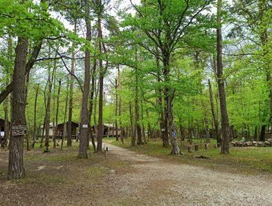 l'ermitage du Grand Bois