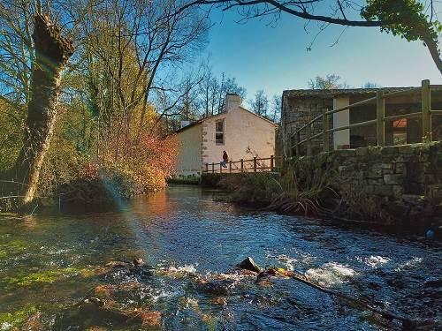 Notre écogîte est situé en bord de rivière et bénéficie d'un cadre exceptionnel.