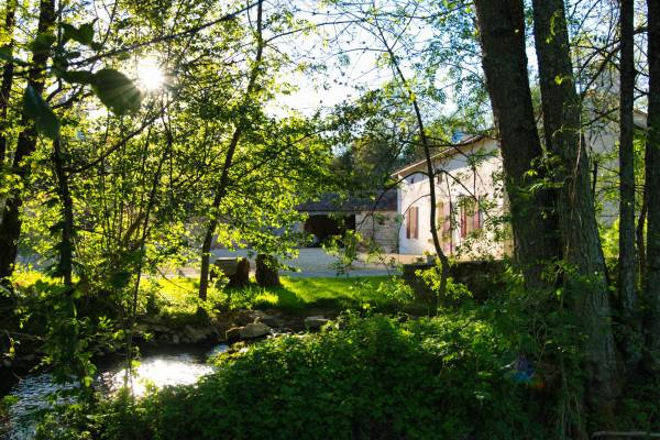 Vue du pré face au gîte. Endroit idéal pour une sieste à l'ombre des arbres, des jeux de plein air ou encore un pique nique champêtre!