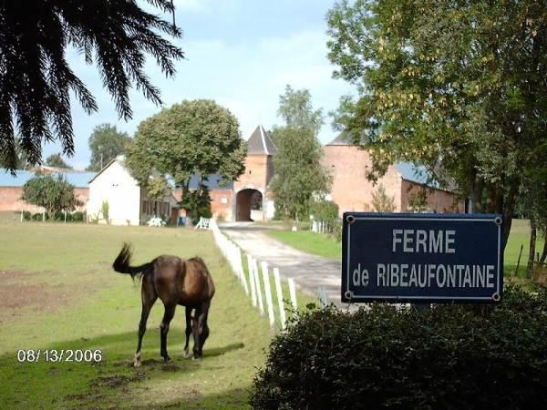 FERME DE RIBEAUFONTAINE