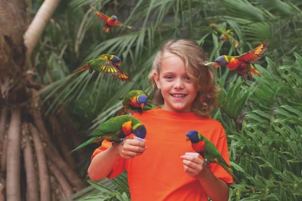 Le parc des oiseaux à 15 kms
