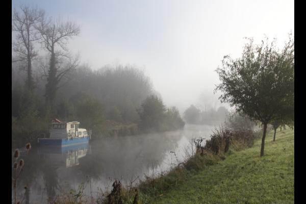 Le Marais Pin à Magné un matin de novembre