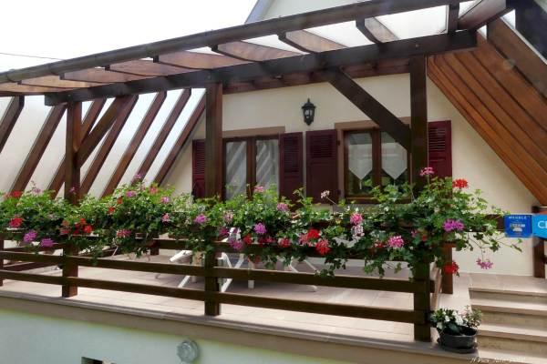 La terrasse en fleurs...