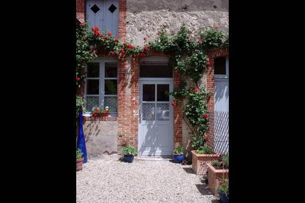 Petite cour fleurie espace extérieur