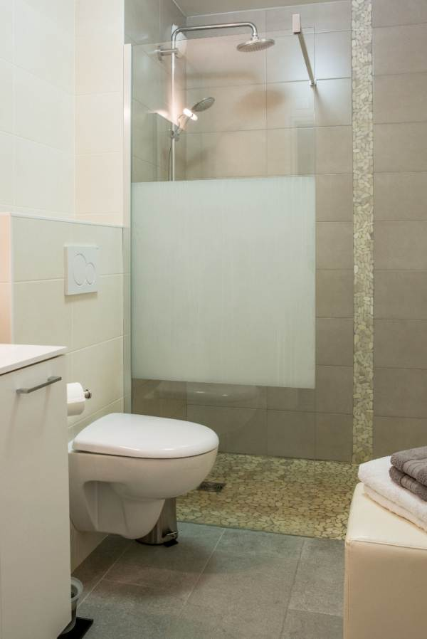 wc dans salle de douche