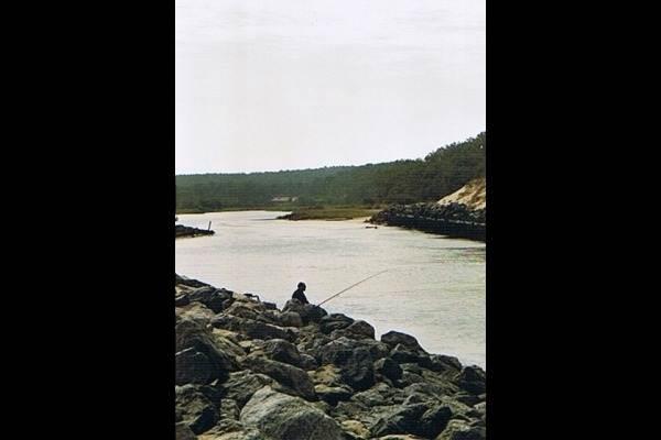 Pêcheur au Courant de Contis