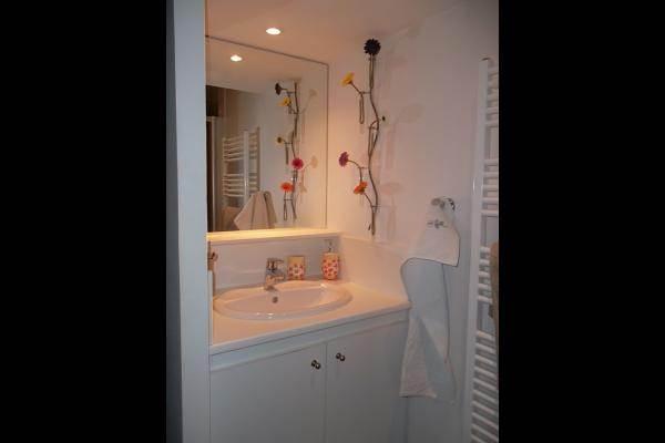 salle de bain avec douche au meublé de l'Orangerie