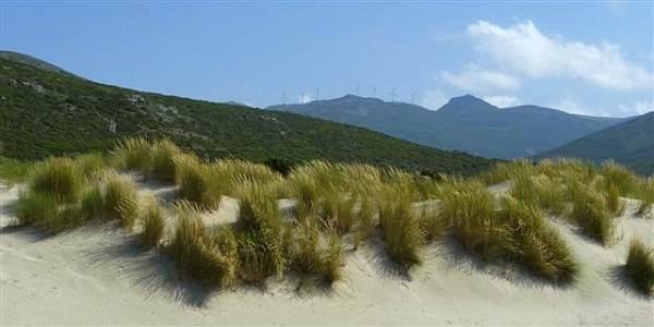 dune de Barcaggio
