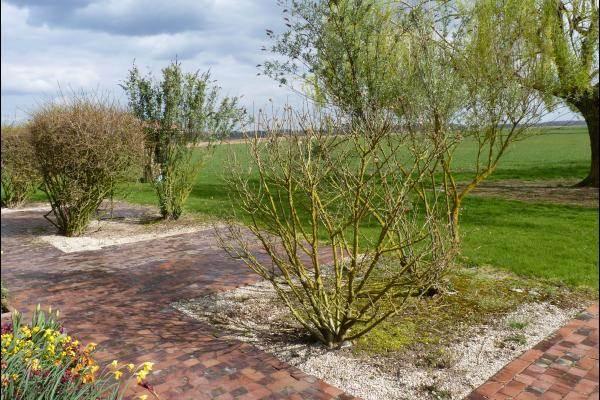 Terrasse végétalisée vue sur campagne