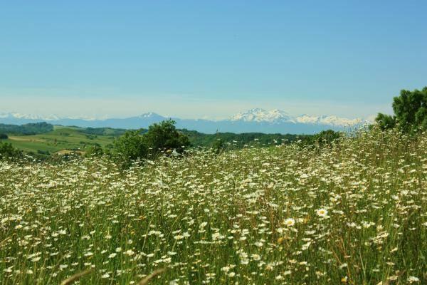 Vue Pyrénées au printemps