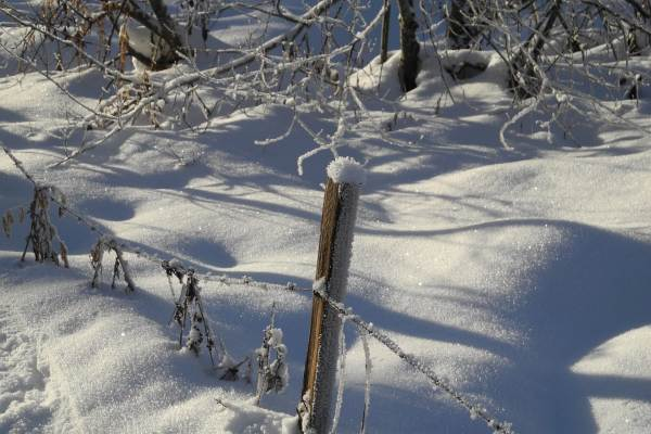Les Berlicants - Mijoux saison hiver